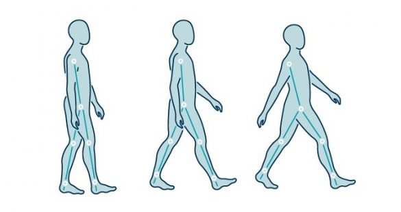 Line drawing of humans walking, showing the gait cycle